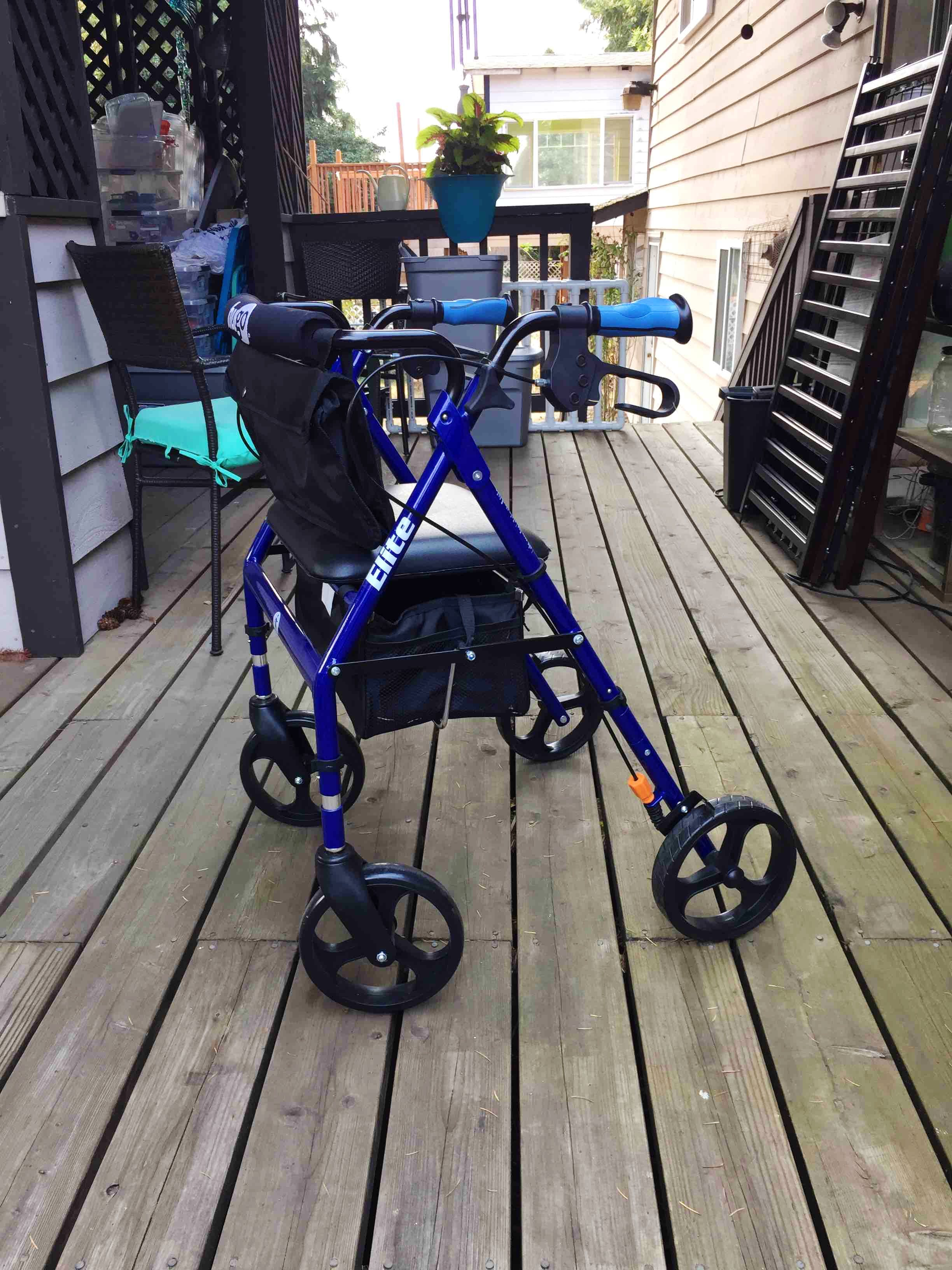 Elite Walker in Mint Condition